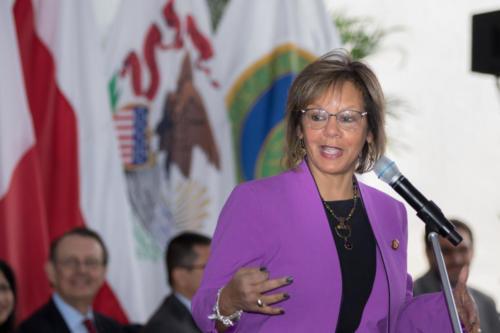 Representative Robin Kelley (D-IL-2)